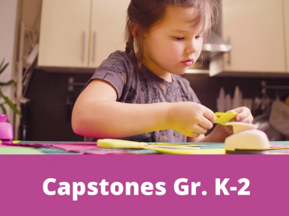 k-2 capstone projects
