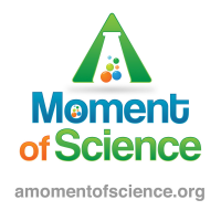 A Moment of Science's picture
