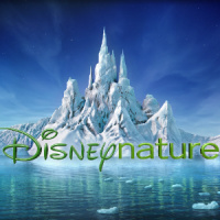 Disneynature's picture