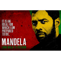 Mandela: Long Walk to Freedom's picture