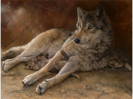 Main picture of Mother Wolf- A Kyrgyzstan Folk Tale for ELD