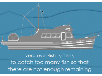 Main picture of Bycatch and Overfishing Posters