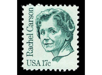 Main picture of Rachel Carson & the Modern Environmental Movement