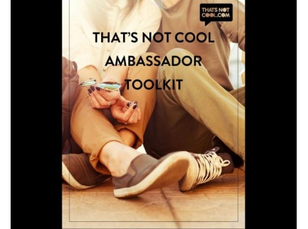Main picture of That's Not Cool: Ambassador Toolkit