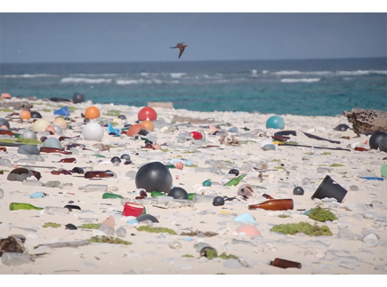 Main picture of Healthy Oceans: Preventing Plastic Pollution