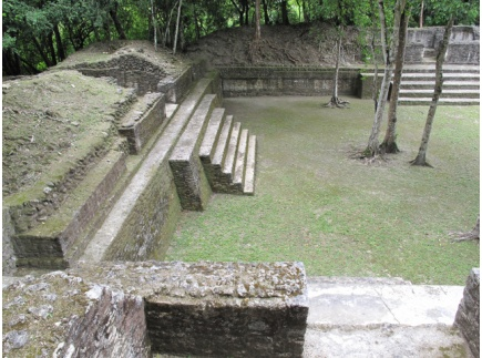 Main picture of Maya Agriculture