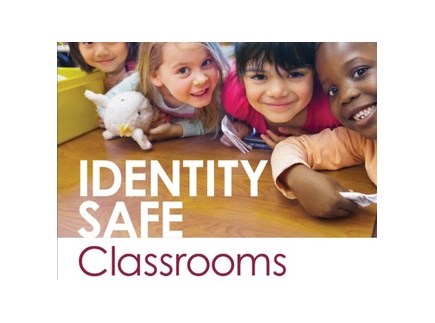 Main picture of Spreadsheet: Identity Safe K-12 Signature Strategies for an Equitable Classroom