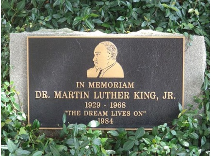 Main picture of Martin Luther King & the Dream-R. DuBose-Butler -7