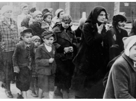 Main picture of Introduction to the Holocaust: Documentary Film and Classroom Materials