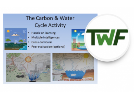 Main picture of Water and Carbon Cycle Diagram Activity - Bring out their creativity!