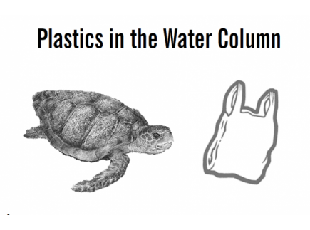 Main picture of Plastics in the Water Column