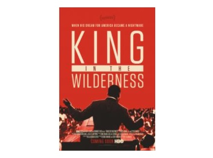 Main picture of King in the Wilderness