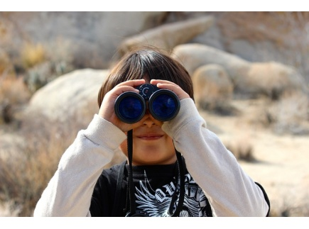 Main picture of Observation Data Collection Forms for Behavior Management