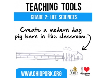 Main picture of Build Your Own Pig Barn - A Great Project for Kids