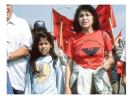 Main picture of Dolores Huerta: A Civil Rights Icon