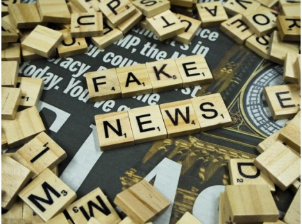 Main picture of Media Literacy: Fake VS Real News