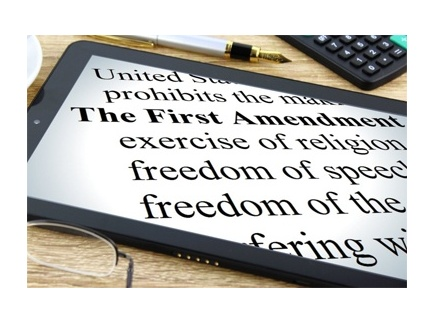 Main picture of THE FIRST AMENDMENT AND OUR FREEDOMS
