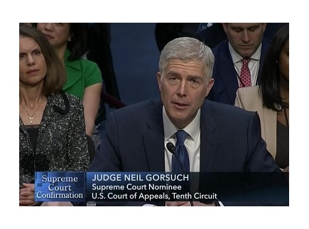 Main picture of You be the Judge! Supreme Court Nominee Neil Gorsuch Activity
