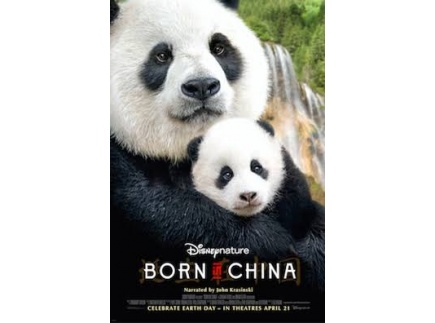 Main picture of Compare and contrast organisms living in China