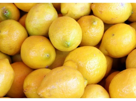 Main picture of Lemon Exercise in Stereotyping