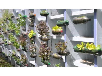 Main picture of How to Construct a Hanging Bottle Garden