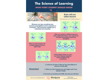 Main picture of Brain Science & Growth Mindset: The Science of How We Learn