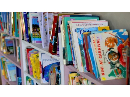 Main picture of Picture Books and the Bill of Rights Activity