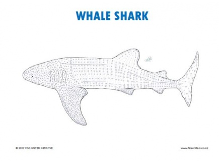 Main picture of Whale Shark Coloring Page