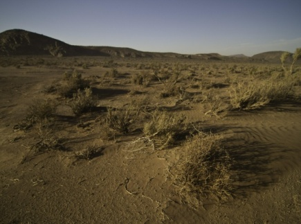Farming the Desert - The Science Behind Desertification