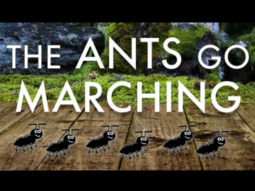 Practice counting with the Ants Go Marching