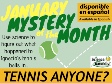 January Mystery of the Month: Tennis, Anyone?