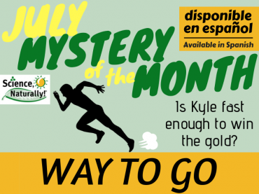 July Mystery of the Month: Way to Go