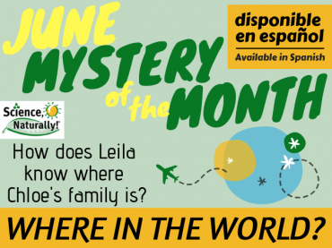 June Mystery of the Month: Where in the World?