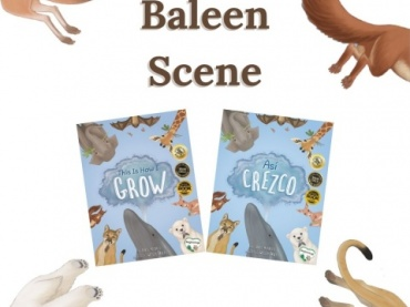Baleen Scene Activity from This Is How I Grow