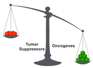 Chemotherapy Resistance: The Fault in Our Cells