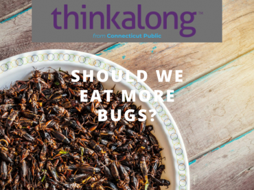 Should we eat more bugs? - Civil Discourse for Classrooms