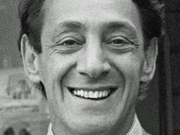 Harvey Milk Lesson Plan