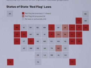 """Should the federal government enact """"red flag"""" laws to prevent gun violence?"""