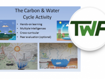 Water and Carbon Cycle Diagram Activity