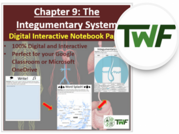 The Integumentary System - Digital Interactive Notebook Pages