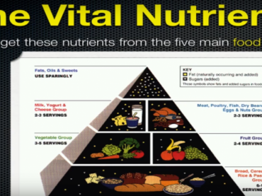 Six Vital Nutrients