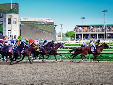 By Bill Brine (Flickr: Kentucky Derby 2014-0214) [CC BY 2.0 (https://creativecommons.org/licenses/by/2.0)], via Wikimedia Commons