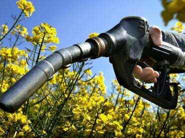 Science of Innovation: Biofuels