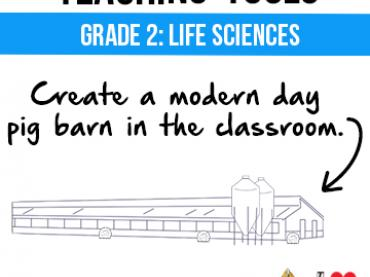 Build Your Own Pig Barn - A Great Project for Kids