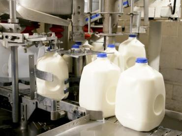 Discover Dairy & Milk Safety
