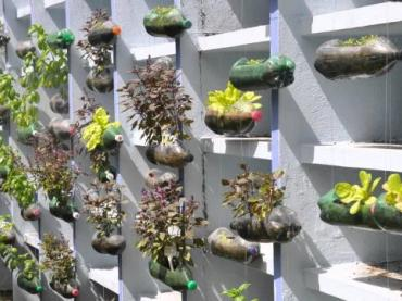 How to Construct a Hanging Bottle Garden