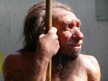 Natural Selection Modeling with Neanderthals