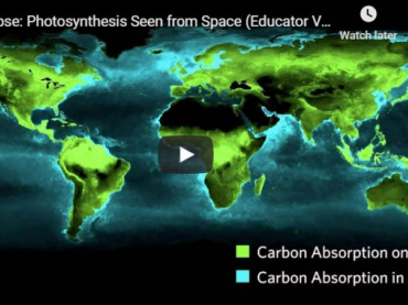 Timelapse: Photosynthesis Seen From Space