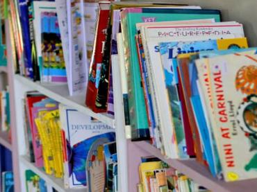Picture Books and the Bill of Rights Activity