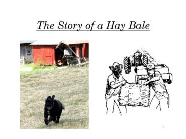 Farm Lesson: The Story of a Hay Bale